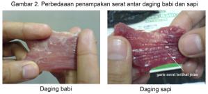 serat-babi